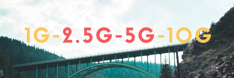 1G-10G Bridge